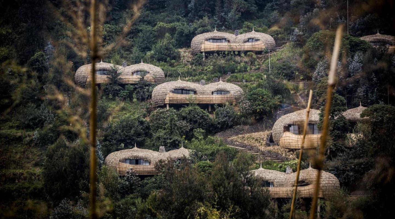 Bisate Lodge Rwanda Gorilla trekking 13