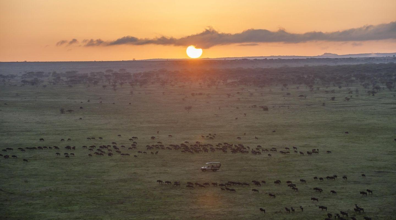 Legendary Migrational Camp Serengeti 2