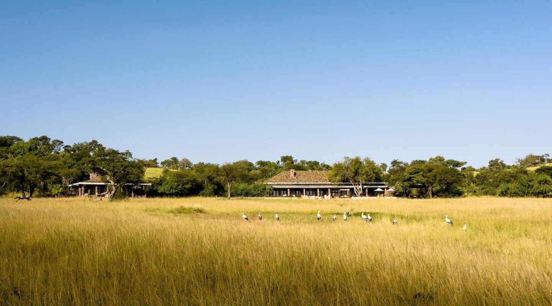 Singita Serengeti Houe Tanzania Safari 1