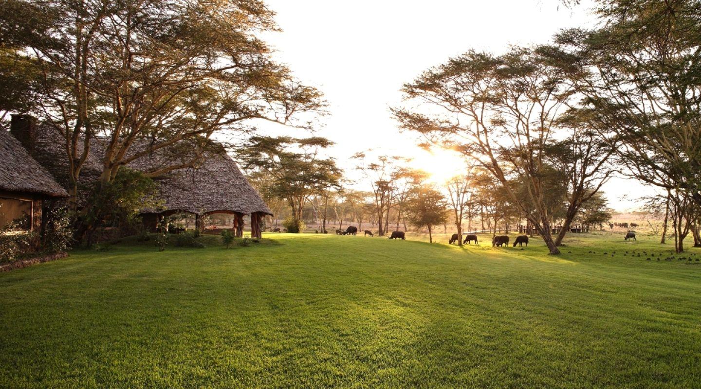 Sirikoi Kenya 8jpg
