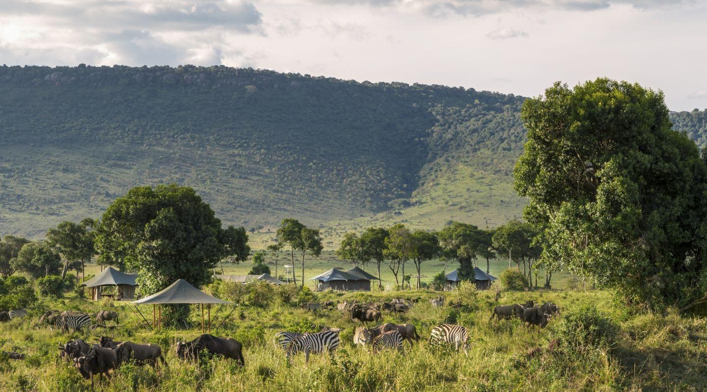 Angama private safari camp migration
