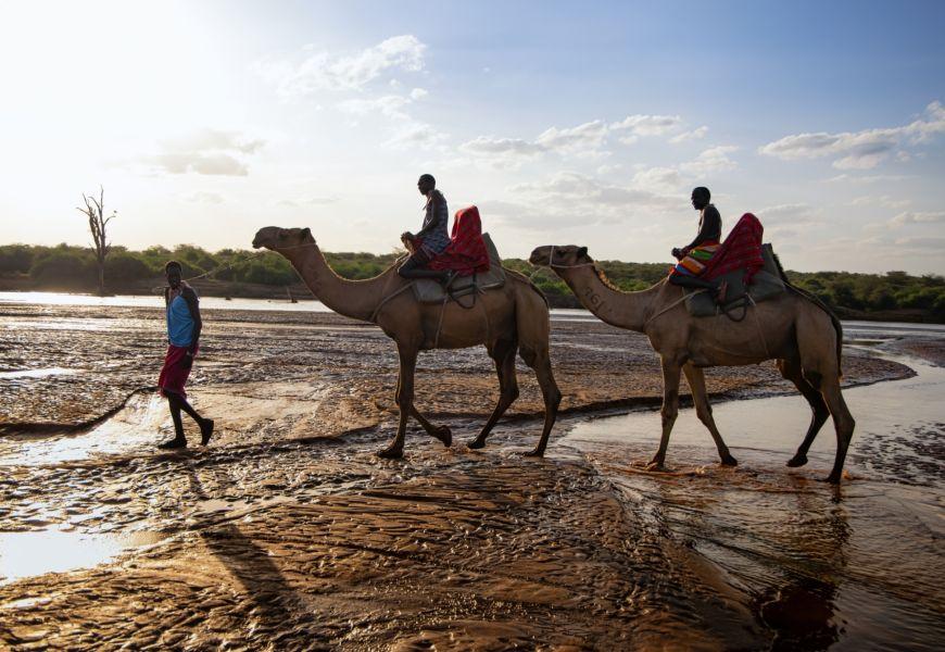 Sasaab Kenya camel keith ladzinski