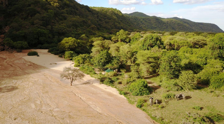 MANYARA GREEN CAMP ELEPHANTS