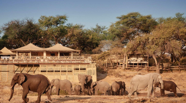 Belmond Savute Elephant Lodge 14