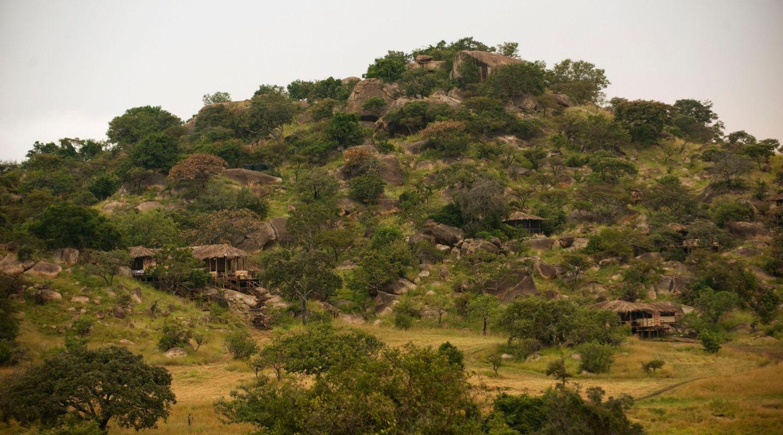 Lamai Serengeti See but don t be seen