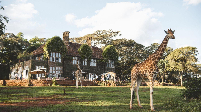 Giraffe Manor Nairobi Kenya 13