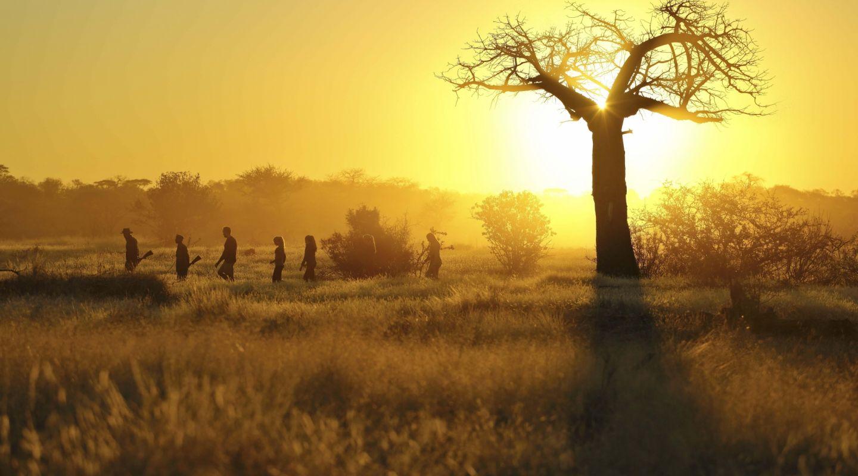 Kichaka Frontier Camp Ruaha Tanzania 9