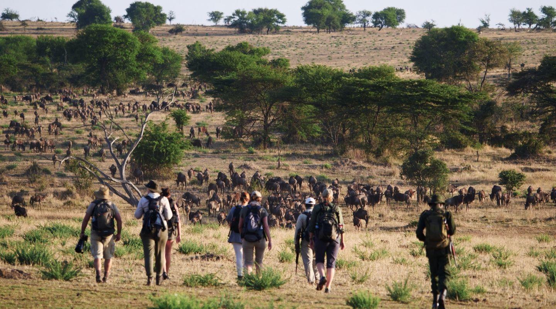 Wayo Walking Safari Serengeti Tanzania 1
