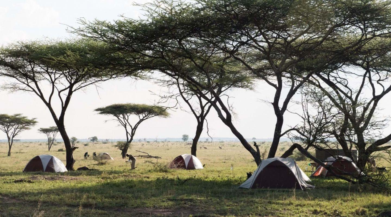 Wayo Walking Safari Serengeti Tanzania 5