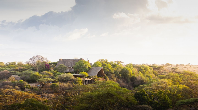 Lewa Wilderness Laikipia Kenya 2